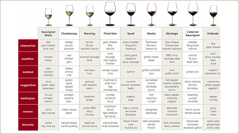 Wine Pairing for Beginners