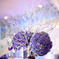 Purple-modern-Tampa-wedding-25