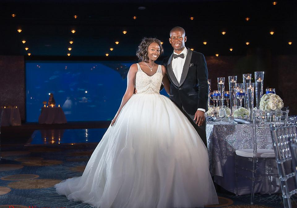 A Romantic Georgia Aquarium Wedding