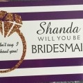 The Coordinated Bride Jamisha Will You Be My Bridesmaid 1