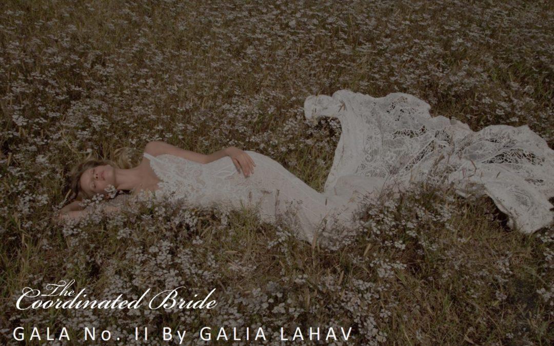 GALA No. II by Galia Lahav