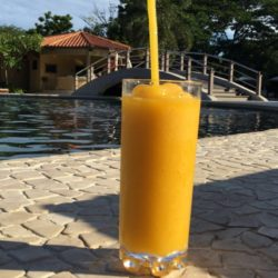 Mango Daiquiri - The Coordinated Bride - Wedding - Westin Playa Conchal