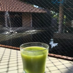 Veggie Juice at the Buffet - The Coordinated Bride - Westin Playa Conchal Costa Rica