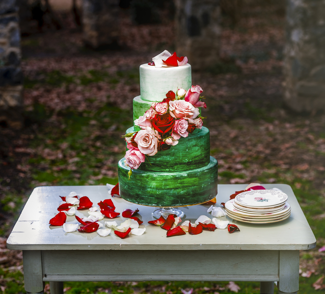 The Coordinated Bride Wedding Blog__NietoPhotography_RowanLane20160981Edit_0_low