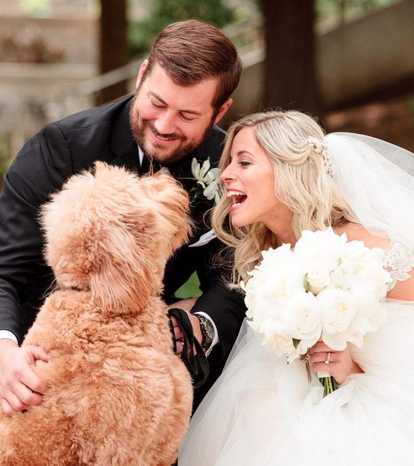 Elegant Ballroom Wedding in Ohio – Kim and Michael