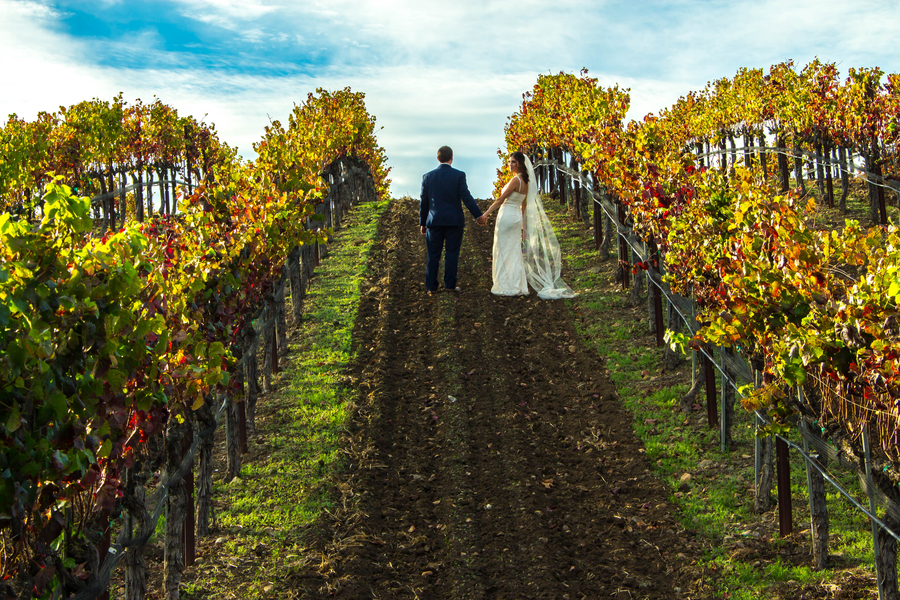 A Intimate California Vineyard Elopement