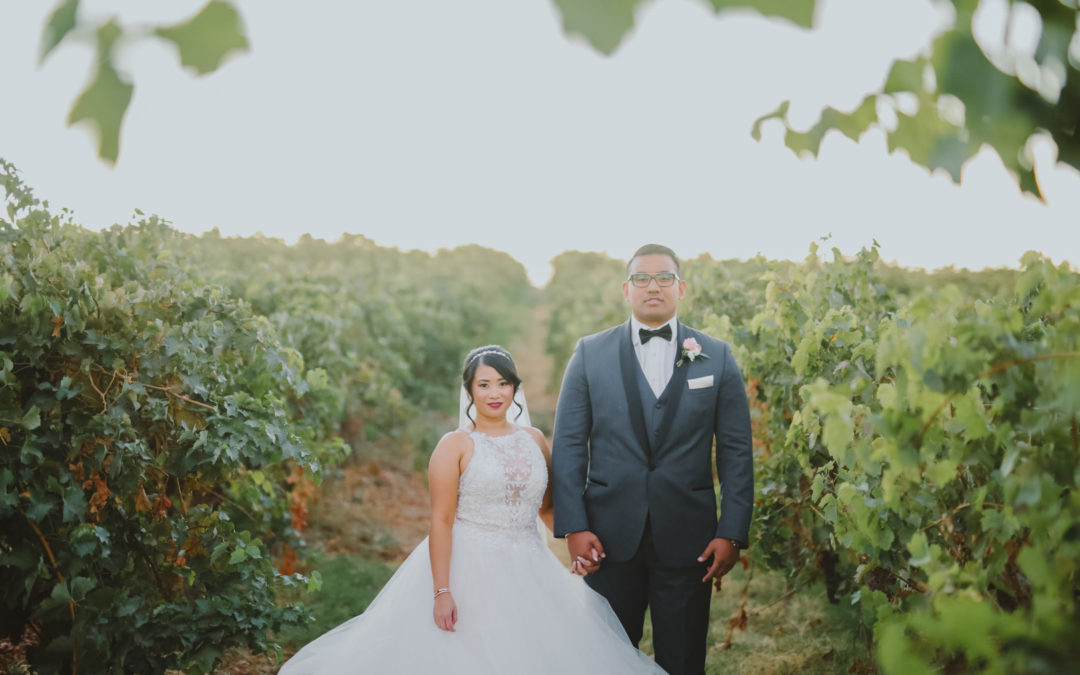 Glitter and Brass Vineyard Wedding: Hazel & Trystan