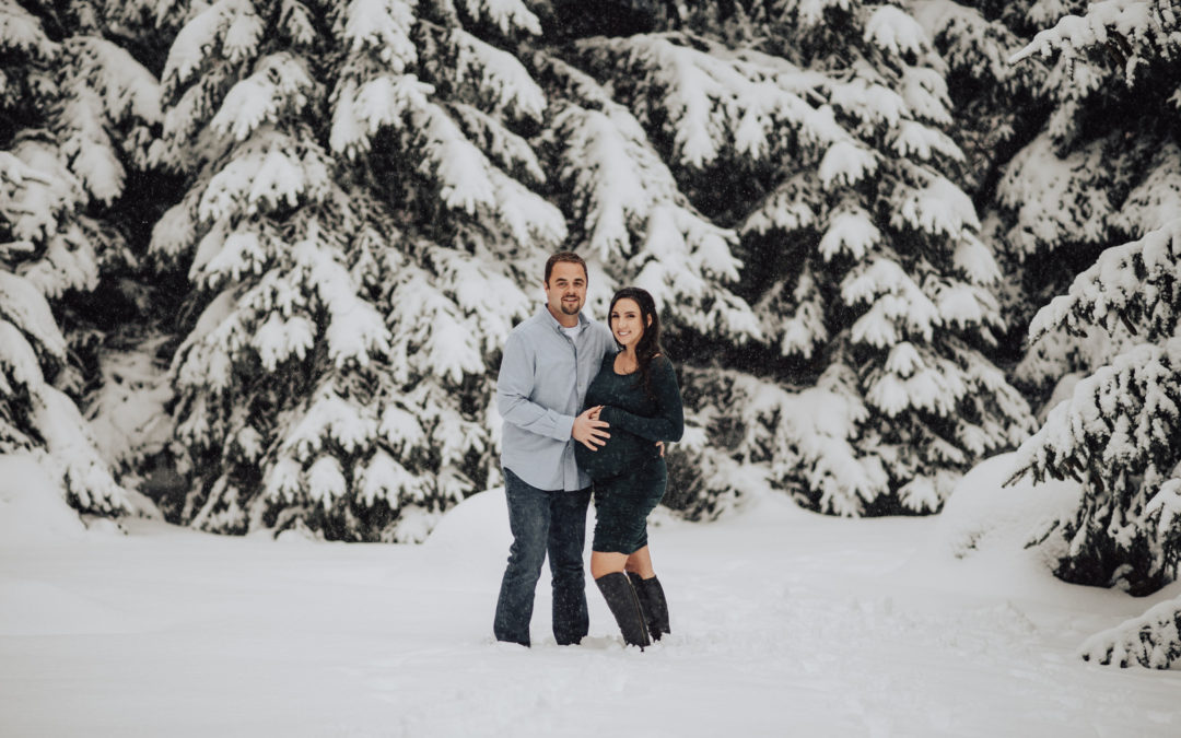 Upstate New York Winter Wonderland Twin Maternity Shoot