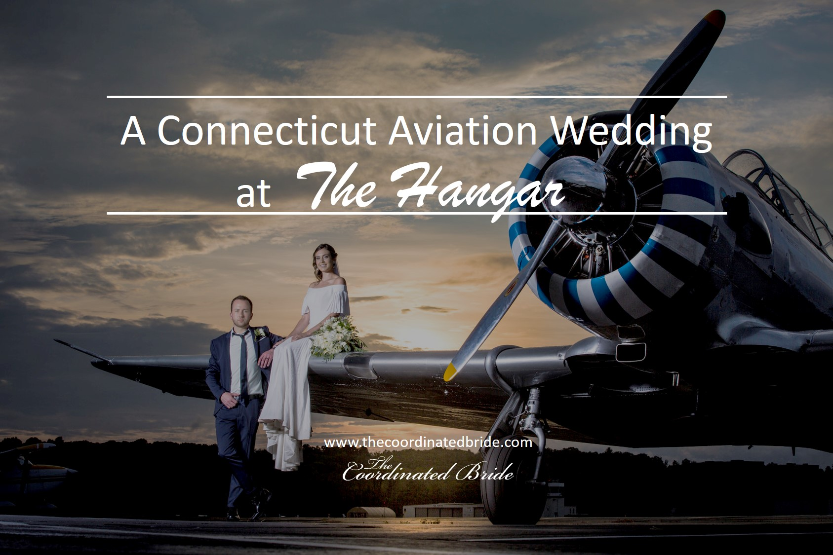 Love is in the Air, An Aviation Themed Wedding