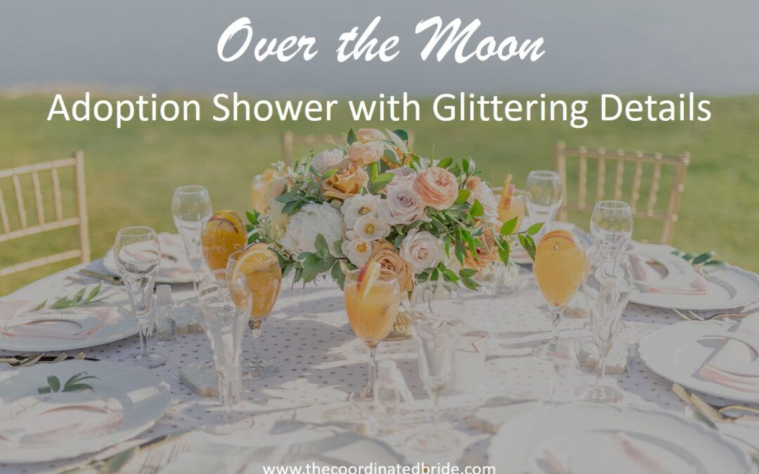 """Over The Moon"" Themed Adoption Shower"