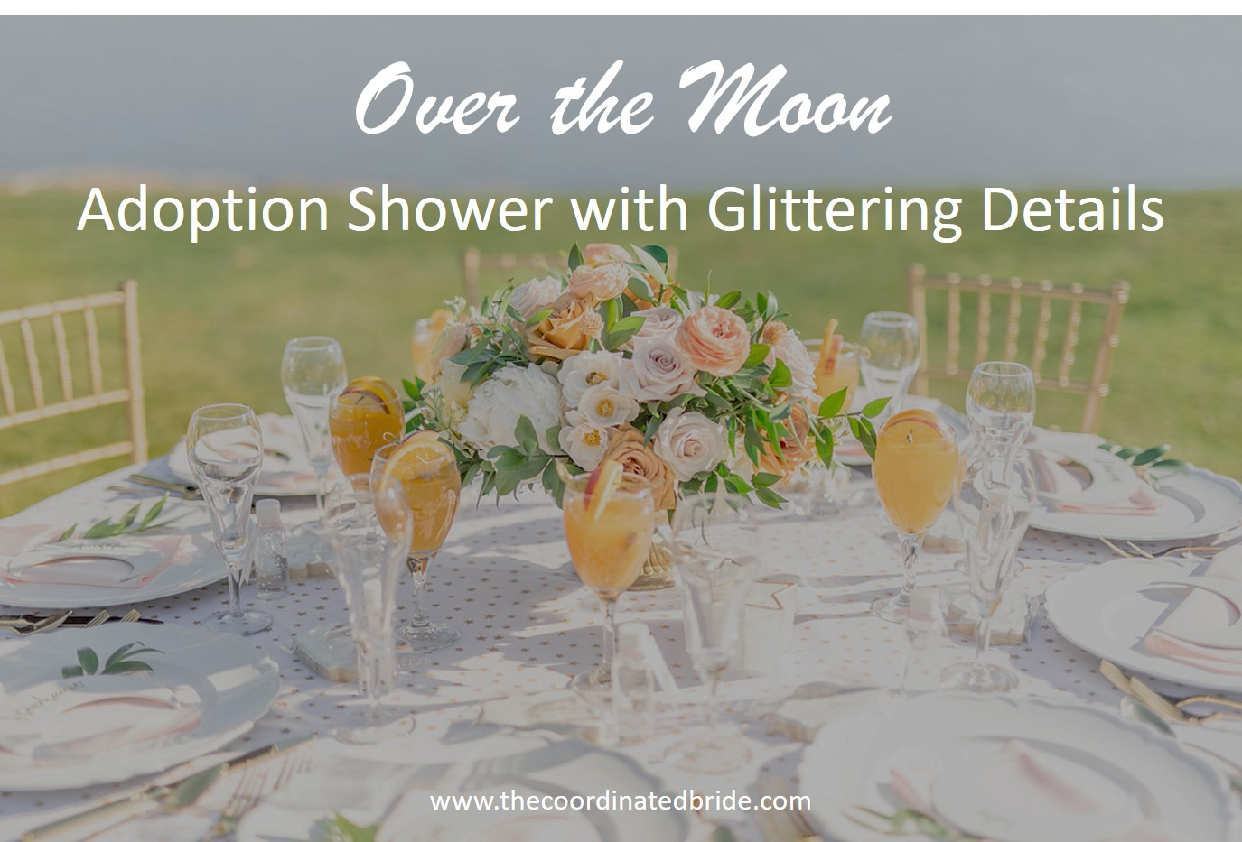 """""""Over The Moon"""" Themed Adoption Shower"""