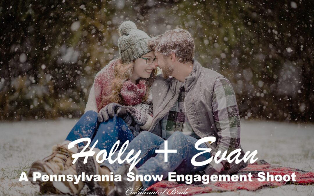 Hollie + Evan's Pennsylvania Snow Engagement Shoot